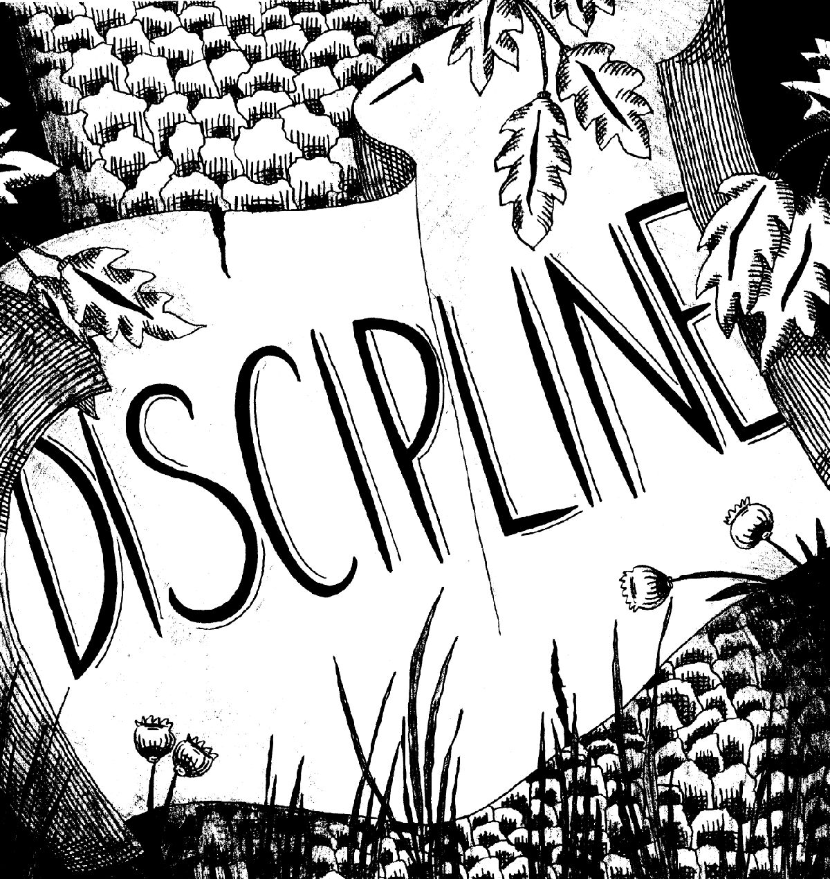 write an essay on discipline image source charlottejohnsonfileswordpresscom
